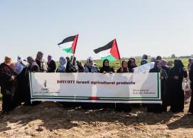 Steunt Nederland mantelorganisatie van Palestijnse terreurbeweging?