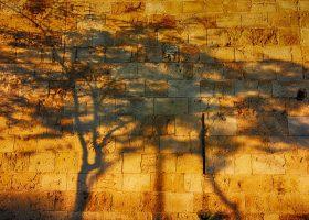 Israël tussen hoop en vrees: onevenwichtige boekrecensie door Marcel Hulspas