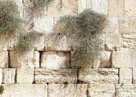 Grote angst onder inwoners Israël vlak voor uitbreken Zesdaagse Oorlog
